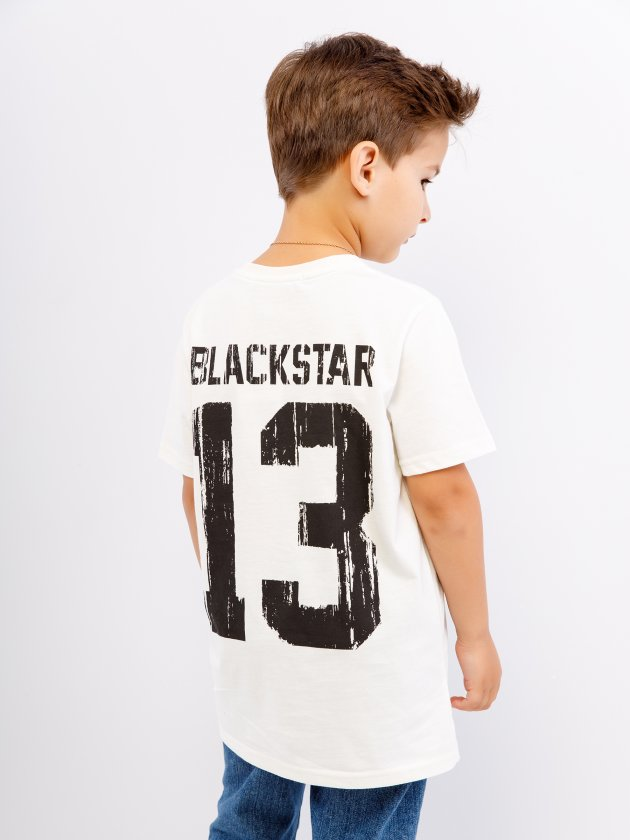 Футболка BASIC 13 2.0 от Black Star Wear